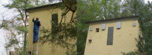 Konversion in ein Fledermausquartier in Brandenburg